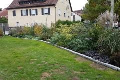 landschaftsbau-hofmann-pflanzungen-007