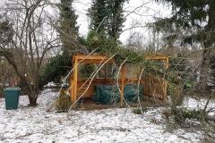landschaftsbau-hofmann-baumfaellarbeiten-001