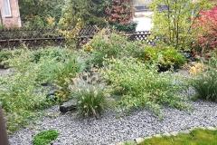 landschaftsbau-hofmann-pflanzungen-015
