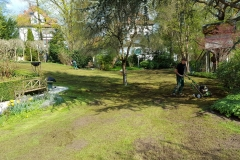 landschaftsbau-hofmann-rasen-004